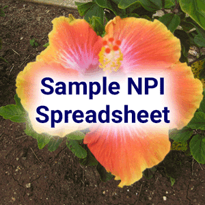 Sample NPI Spreadsheet